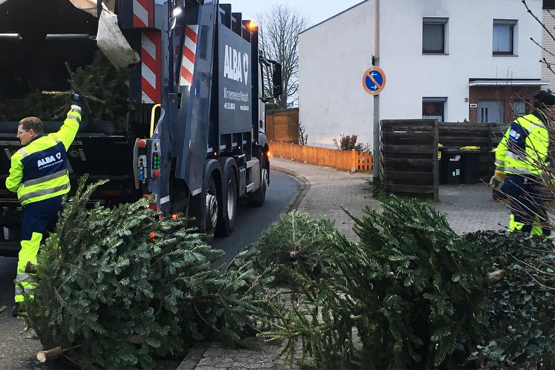 Weihnachtsbaum braunschweig alba